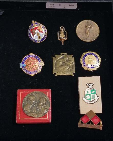 MIXED LOT OF MEDALS, PINS, PENDANTS AND COIN