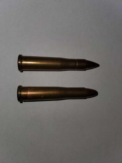 22 Hornet Ammo