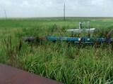 Kinze  Fertilizer rig