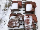 90543- 100# FOUNDRY WEIGHTS FOR IH (12)