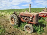 10049- FARMALL SUPER WD-6