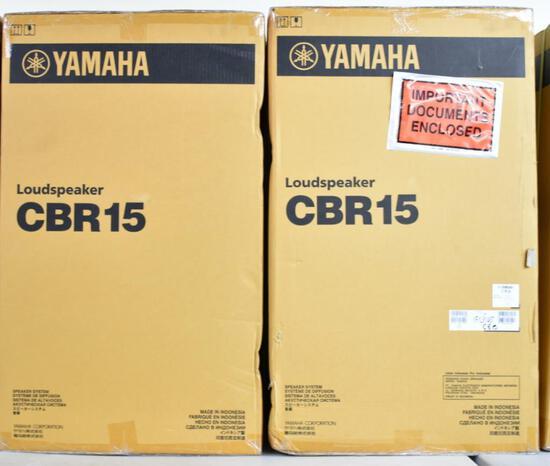 TWO YAMAHA CBR15 PASSIVE SPEAKERS (NIB)