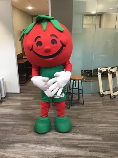Sweet Tomatoes Mascot Costume