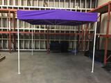 Delta Canopies 10ft. x 10ft. Instant Canopy