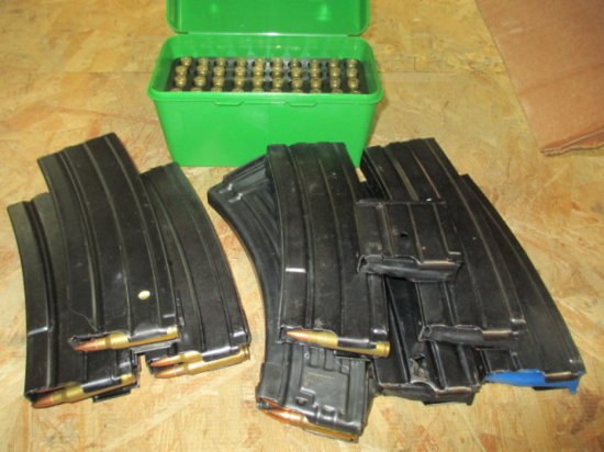 Mini 14 Magazines - Some Ruger and USA some loaded, plus Ammo -> Will not be Shipped! <- con 316