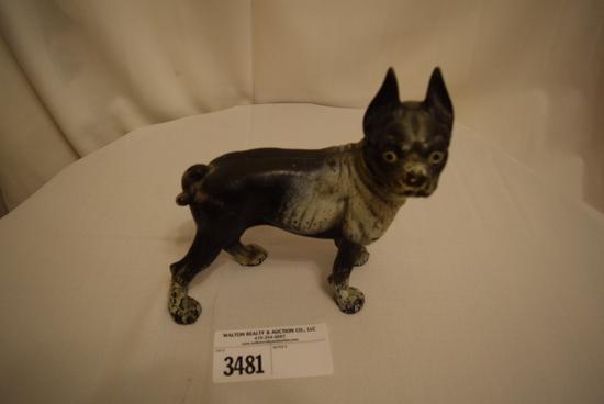 Cast Iron Bull Dog