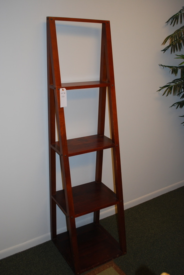 Decorative Ladder Shelf