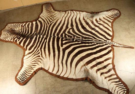 Large Zebra Rug