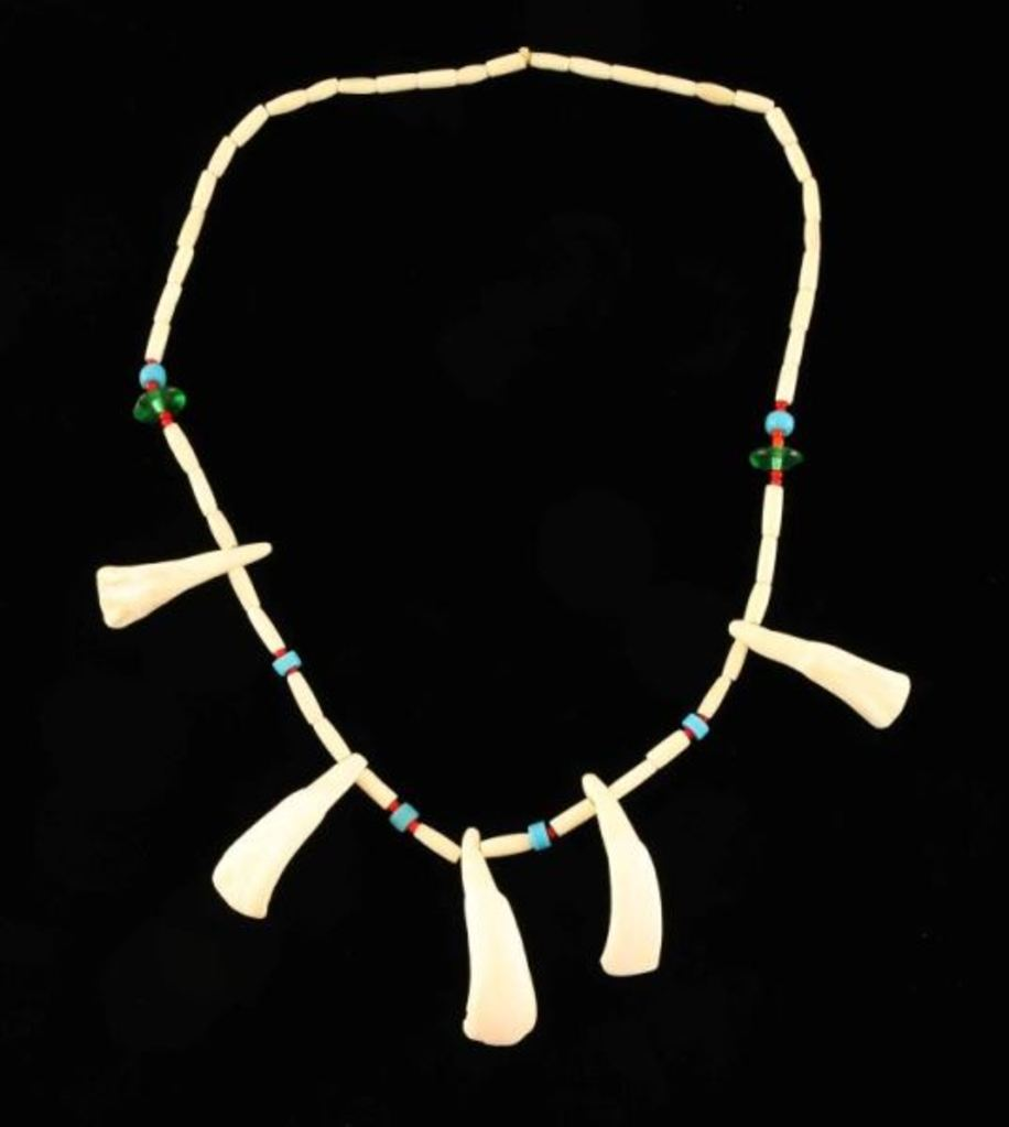 Trade Necklace with Teeth