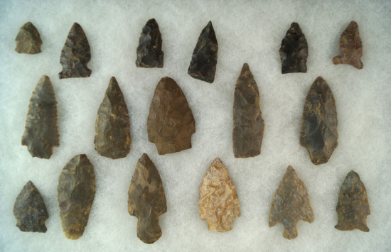 17 assorted Arrowheads, largest is 2 5/16