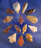"""Group of 14 assorted arrowheads found in Washington, largest is 1 3/8""""."""