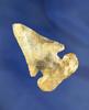 "2 3/8"" Thebes E-Notch Bevel made from Flint Ridge Flint found in Fairfield Co., Ohio. Ex. Townsend."