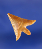 """7/8"""" Gempoint with nice swept wings in excellent flaking found by Kaye Don Bruce, Washington."""