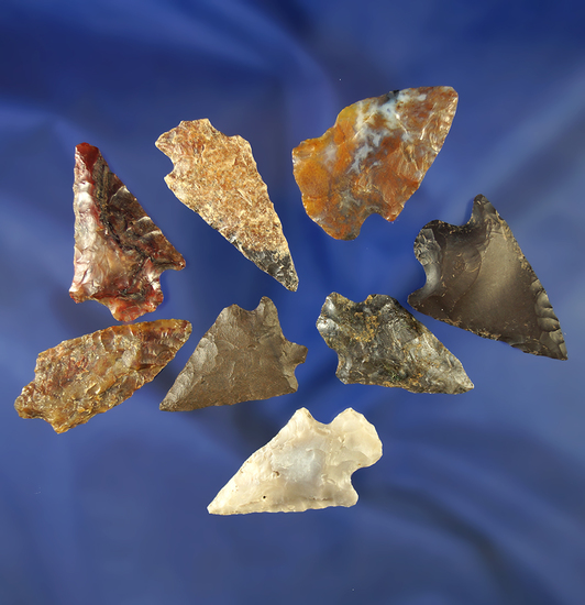 "Group of eight assorted arrowheads, largest is 1 7/16""."