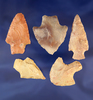 """Set of five assorted Missouri arrowheads, largest is 2 3/16""""."""