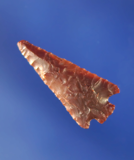 "7/8"" Columbia Plateau made from semi translucent dark red material.    Columbia."