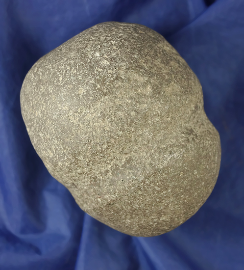 """3 3/4"""" nicely grooved Hammerstone found in Licking Co.,  Ohio."""
