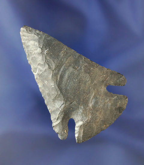 """2 7/16"""" nicely flaked Coshocton Flint Archaic Bevel found in Ohio."""