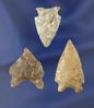"Set of three nice arrowheads found in South Dakota, largest is 1 3/8""."