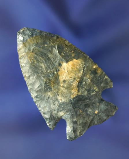 """2 1/16"""" Intrusive Mound Point found in Huron Co., Ohio.  Ex. Jack Hooks."""