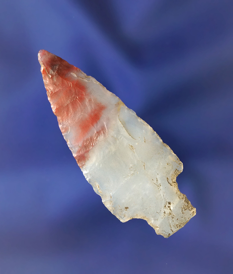 """Thin and nice! Incredible 2 1/8"""" highly translucent Dart point found near Snowflake Arizona."""