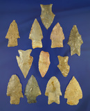 12 assorted Midwestern arrowheads, largest is 1 13/16