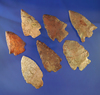"Set of seven assorted Mississippi arrowheads, largest is 2 1/2""."