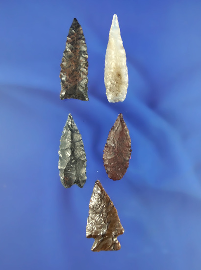 Excellent set of five very nice arrowheads found in Oregon near the Columbia River.