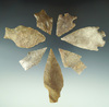 """Set of seven assorted arrowheads found in Texas, largest is 3 1/4""""."""