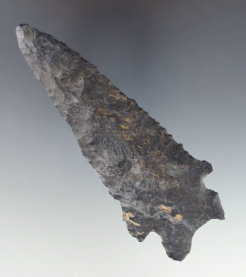 """Large for type! 4 5/16"""" Coshocton Flint Bifurcate found in Jefferson Township, Montgomery Co., Ohio."""