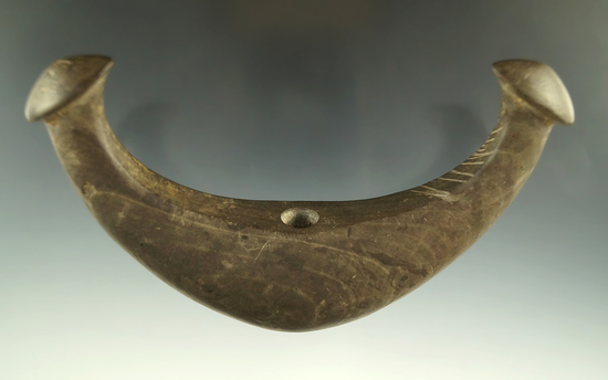 """Sale highlight 5 7/8"""" Knobbed Crescent found by Jim Knight in Washington, Union Co., Ohio. Pictured."""