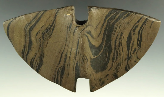 """Ex. Meuser - pictured! 4 7/8"""" Archaic Double Notch Butterfly Bannerstone, Darke Co., Ohio."""