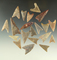 Set of 20 assorted Neolithic African arrowheads found in the northern Sahara desert region.