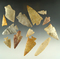 Group of 13 nice arrowheads found in Kansas, largest is 2 3/16