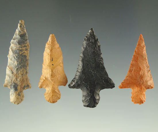 """Ex. Museum! Set of four nice all the points found in the Arkansas area, largest is 1 3/8""""."""