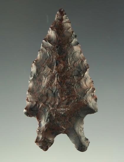"""Ex. Museum! 13/16"""" Pinto Basin - attractive material found in Oregon. Davis COA G-10."""