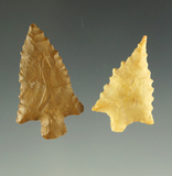 Ex. Museum! Pair of Pinwah points found in Texas. One is pictured in the Overstreet  15th ed.
