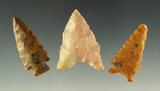 Set of three Nebraska arrowheads, largest is 1 5/16