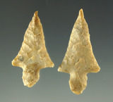 Ex. Museum! Beautiful pair of Alba points found in Texas from the Charles Shewey collection.