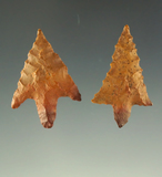 Ex. Museum - Pictured! 2 well styled Perdiz points - Texas. Pictured in the Overstreet 15th ed.