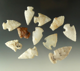 Group of 11 assorted New Mexico arrowheads, largest is 1 3/8