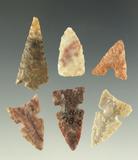 Set of six nice Texas arrowheads, largest is 1 1/8