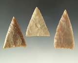 Set of three well styled Triangular point found in Texas, largest is 2 1/16