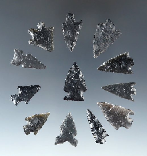 "Set of 12 assorted Obsidian Arrowheads found near Fort Rock Oregon, largest is 7/8""."