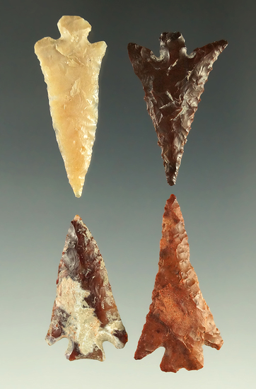 "Set of four Columbia Plateau arrowheads found near the Columbia River, largest is 1 1/8""."