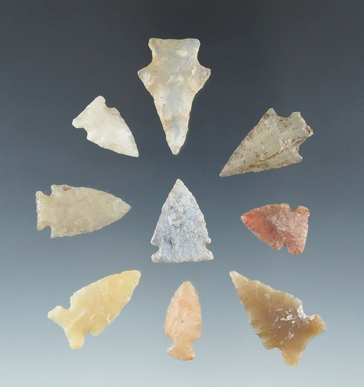 """Set of nine Plains area arrowheads made from quality materials, largest is 1 3/16""""."""