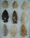 Set of 9 Assorted Ohio Arrowheads, largest is 2 3/8