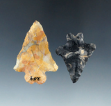 Pair of Fox Valley Bifurcates, largest is 2 1/16