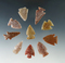 Set of 10 assorted Colorado area arrowheads from the Bob Roth collection, largest is 1 5/16