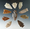 Set of 10 assorted arrowheads found in Colorado, largest is 1 11/16